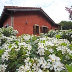 Vista exterior de la casa con jardín